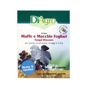 fungal diseases diagro per muffe