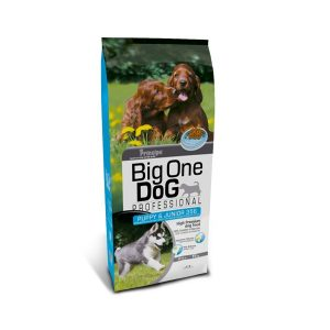 principe-big-one-puppy-junior