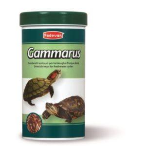 gammarus-30g