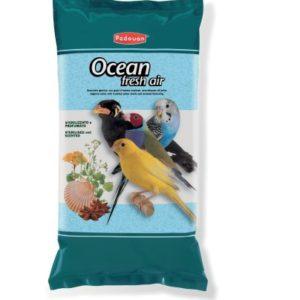 ocean-5kg