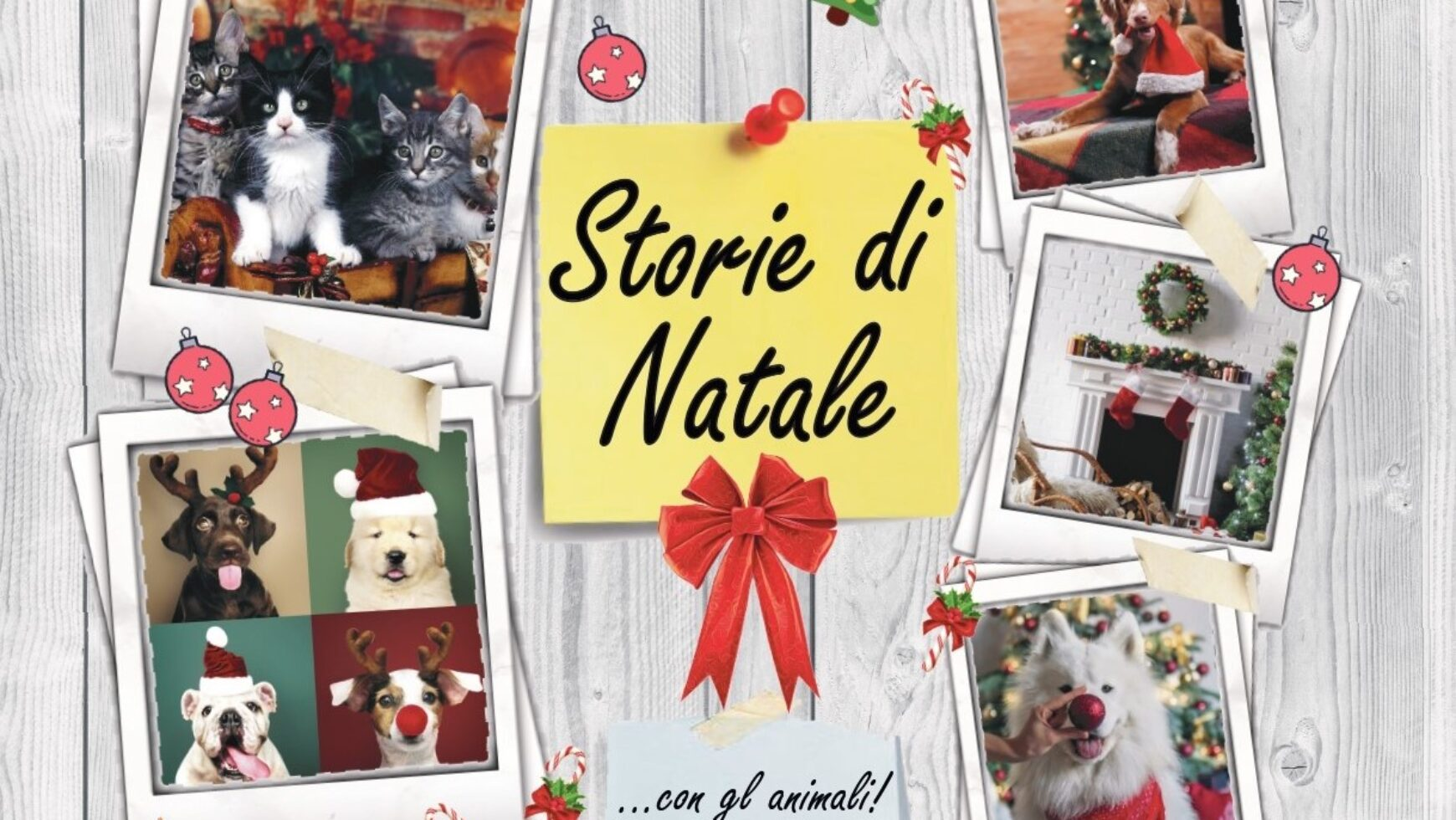 I nostri amici animali nelle storie di Natale 🎇🎄